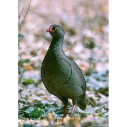 Blason Animalier LCC birdy francolin