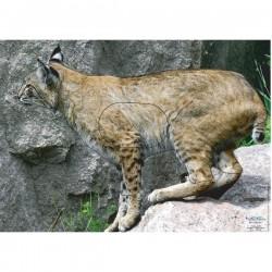 Blason Animalier LCC  PG lynx